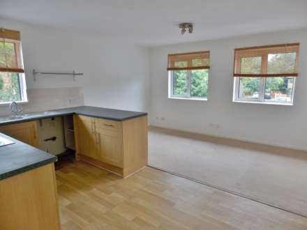 1 Bedroom Apartment, South Beckton