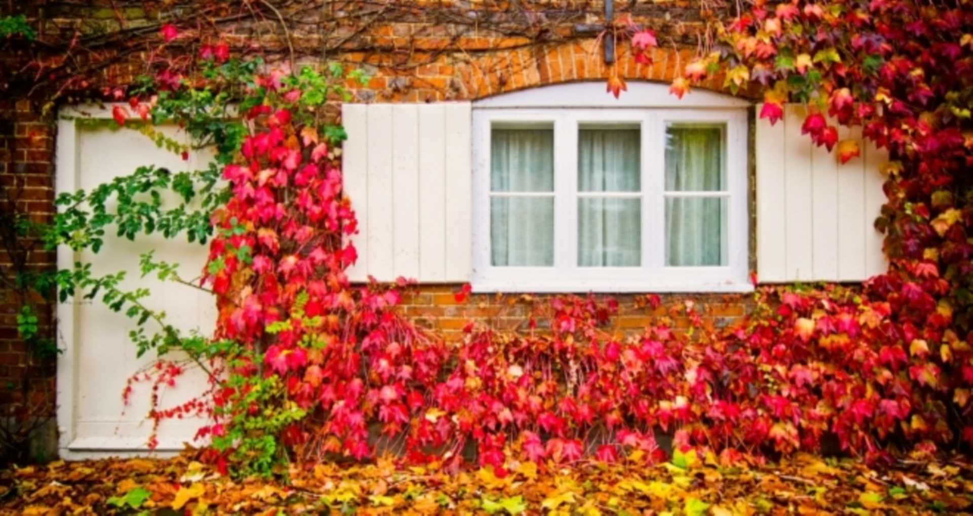 Top tips for Autumn home security