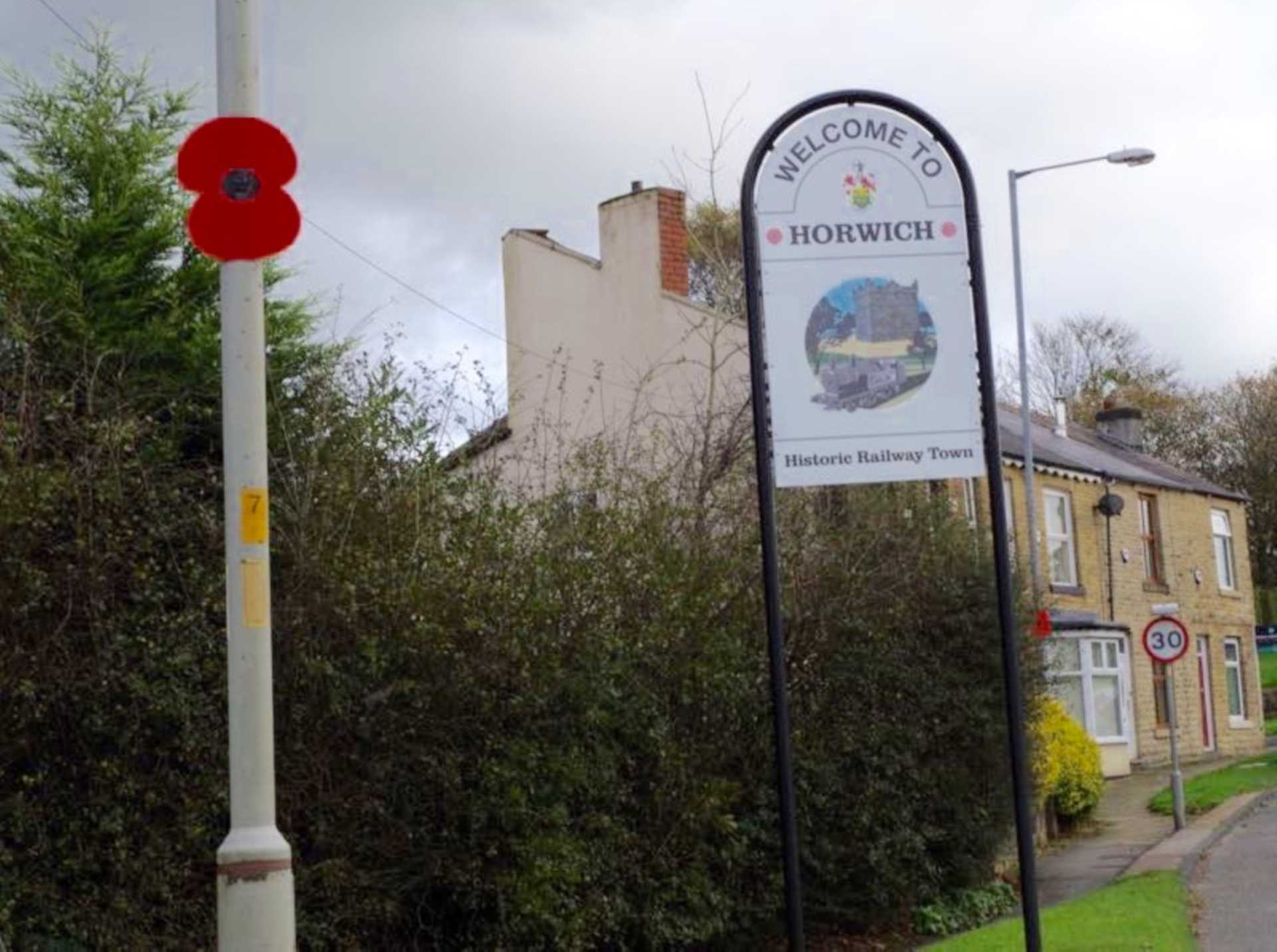 Have you seen the lovely poppies around our town ?