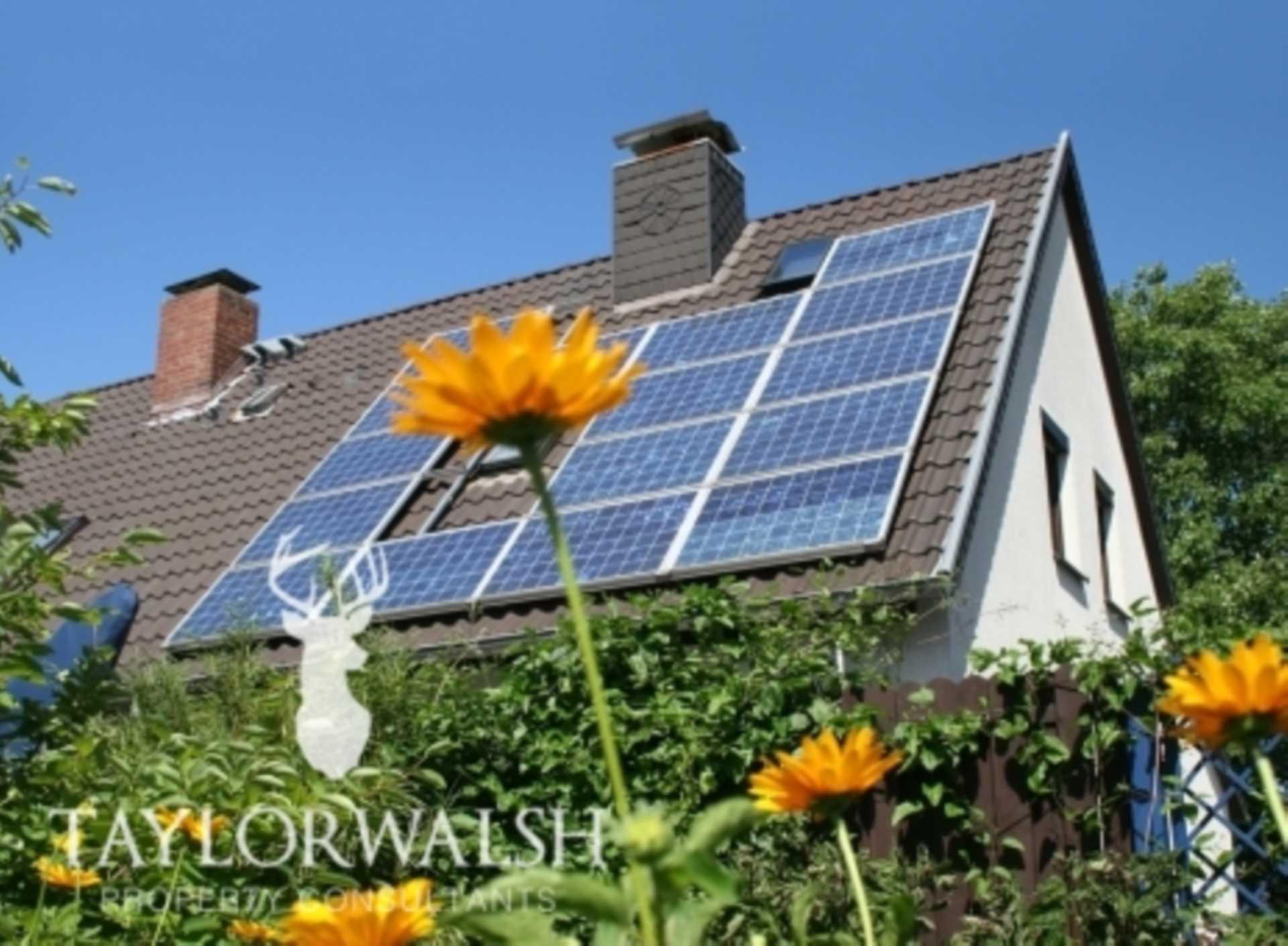 Solar, so good?