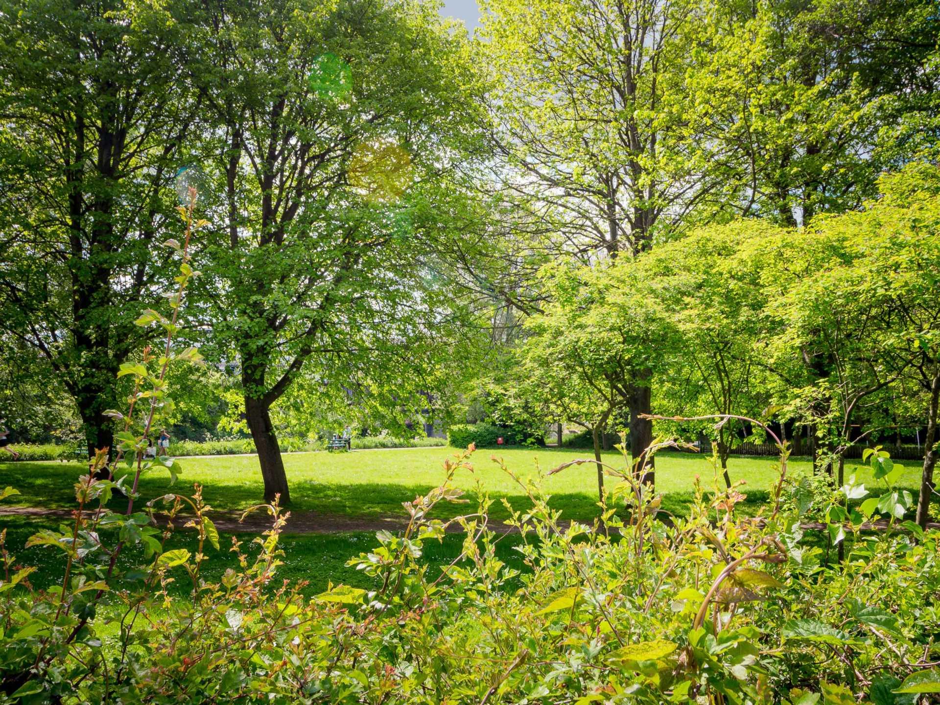 Windsor Villas, Bath, Image 16