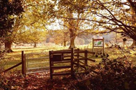 Eight Acres, Tring, Image 5