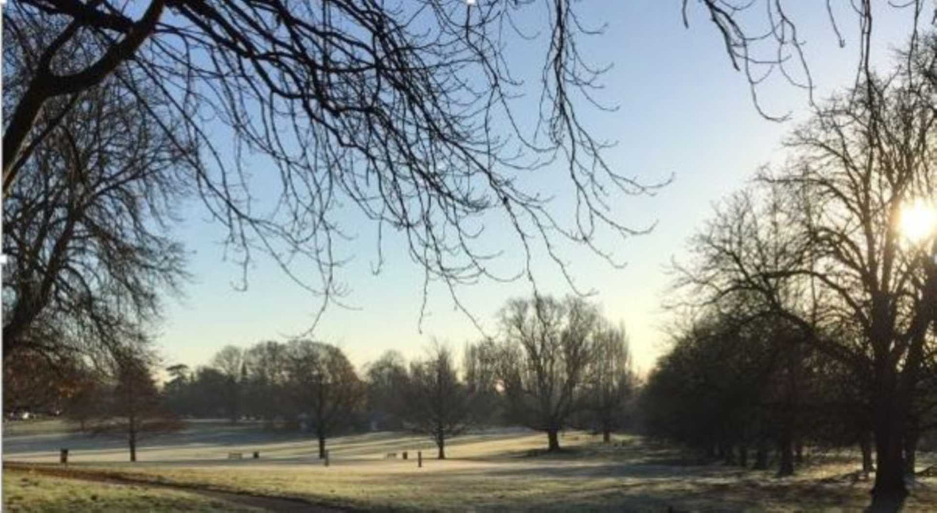 Area in the spotlight – Boxmoor – what makes it special?