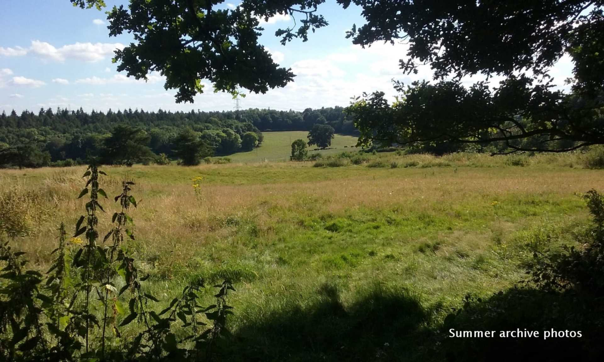 Pangbourne, Berkshire, Image 21