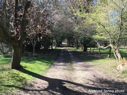 Pangbourne, Berkshire, Image 17