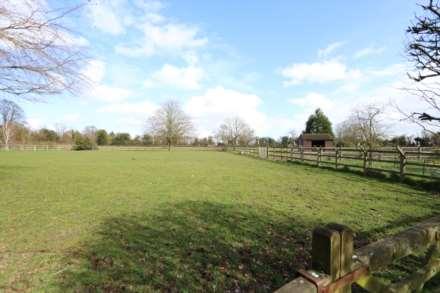 Blandys Lane, Upper Basildon, Berkshire, Image 15