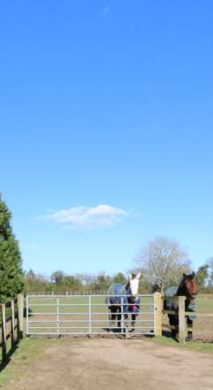 Blandys Lane, Upper Basildon, Berkshire, Image 25