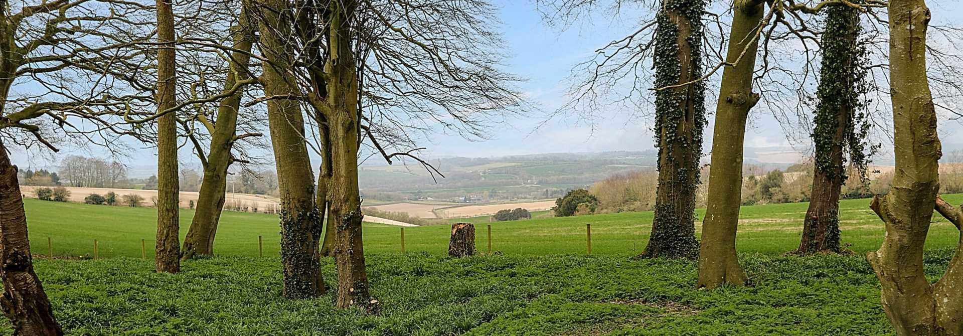 Aldworth, Berkshire, Image 18