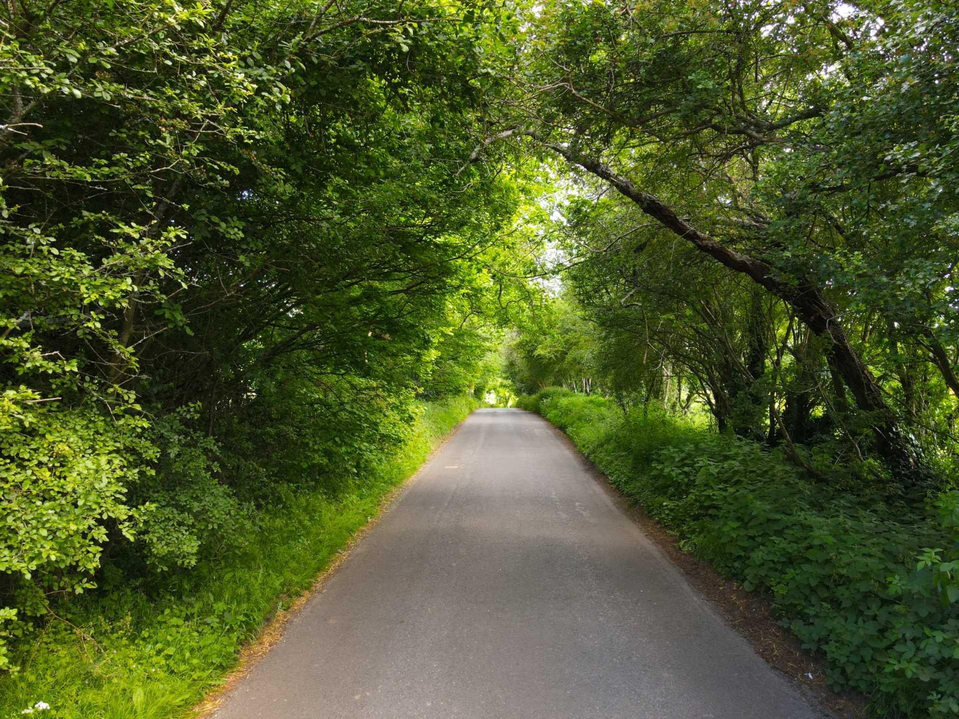 Upper Basildon, Berkshire, Image 22