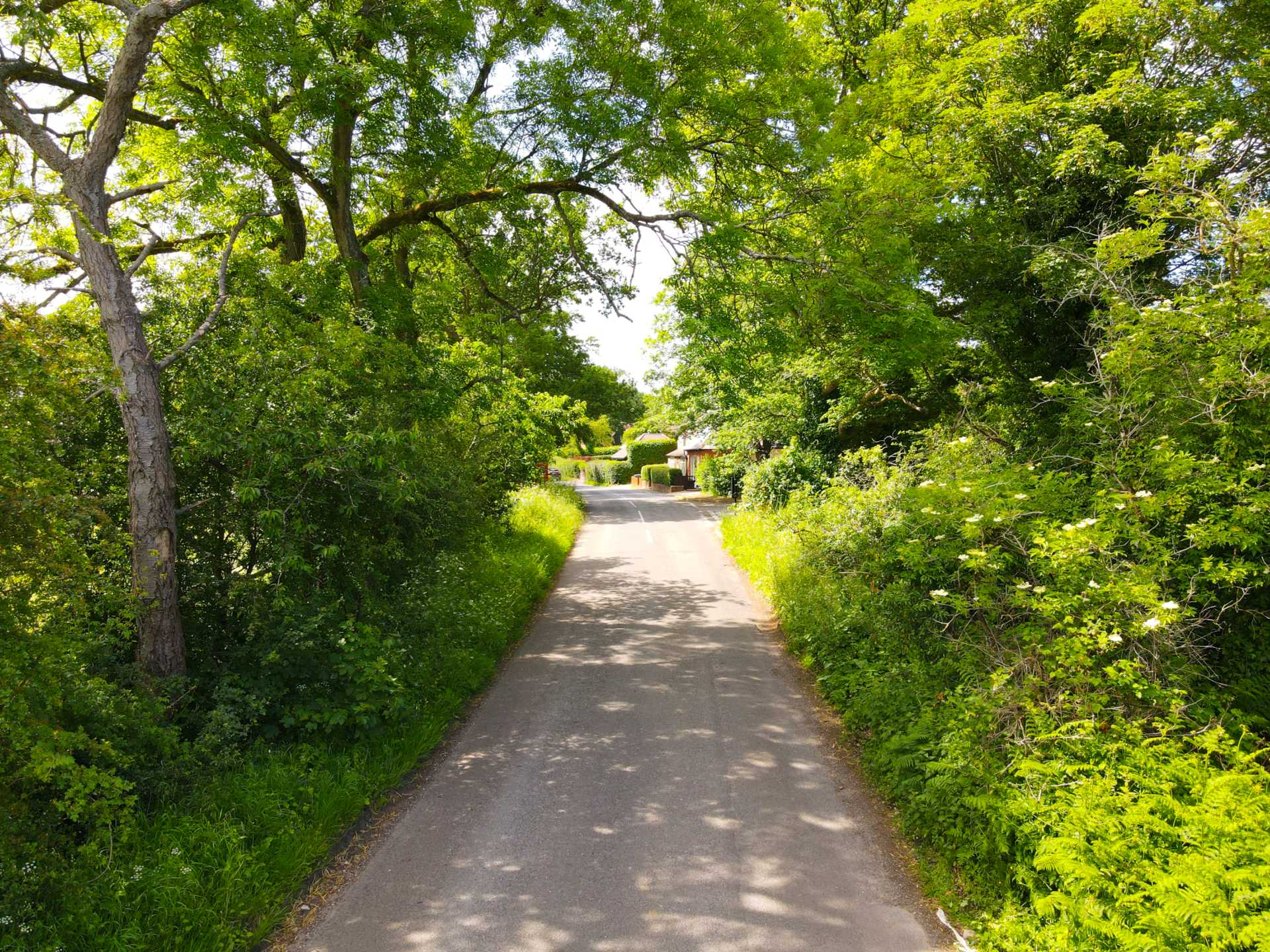 Upper Basildon, Berkshire, Image 3