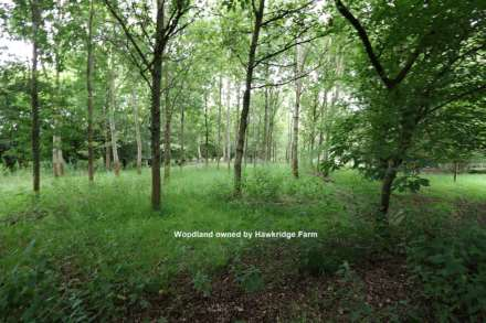 Bucklebury, Berkshire - Yattendon 1½ miles, Image 23