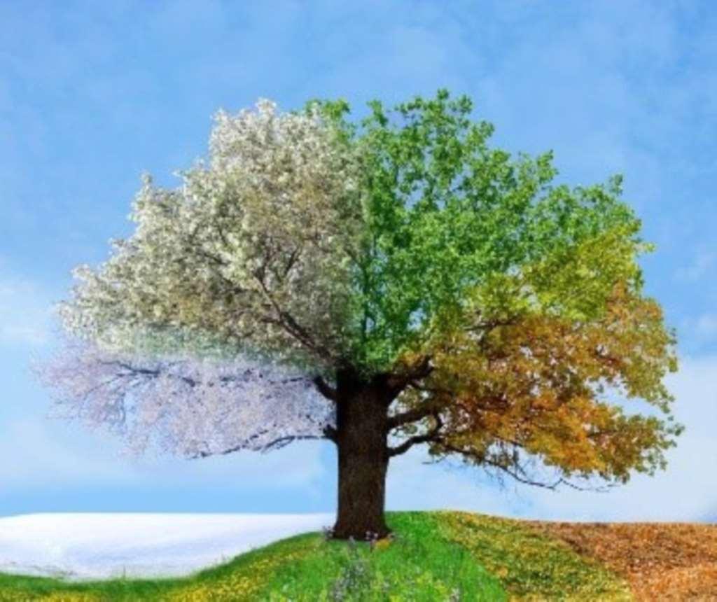 Home Sales Bloom in Spring