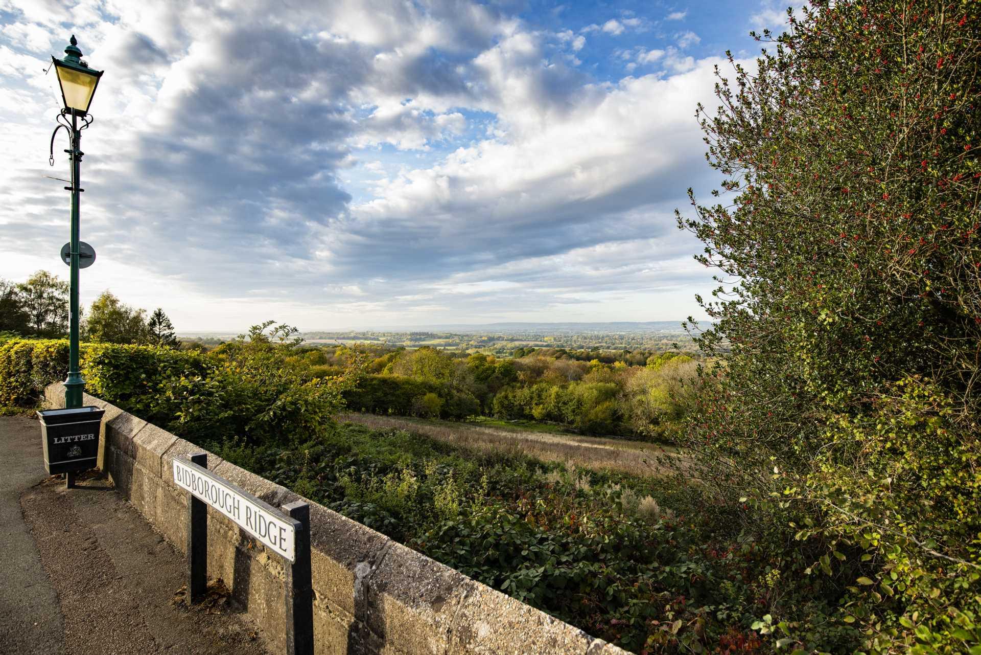 Bidborough Ridge, Bidborough, Image 34