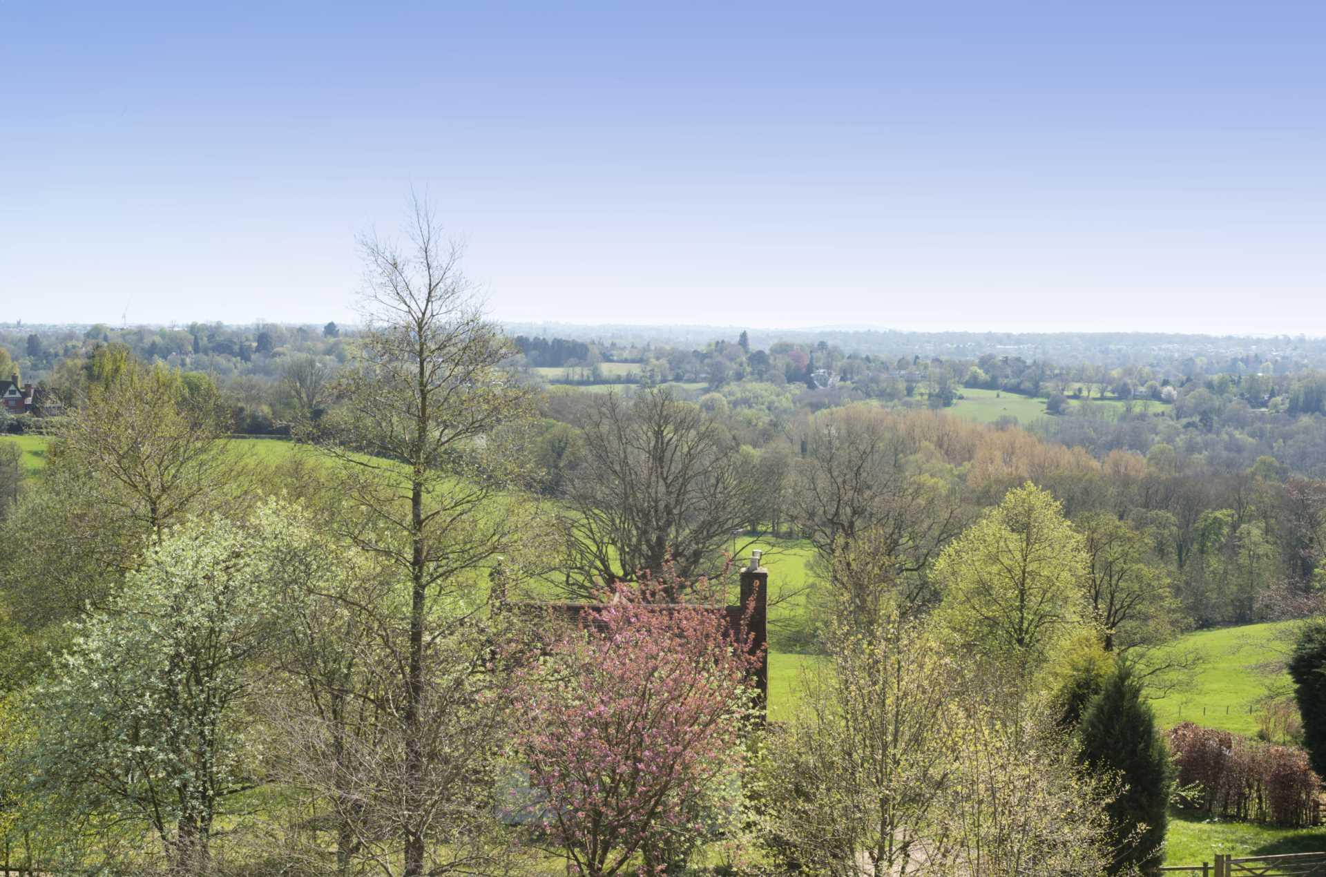 Mill Court, Bidborough, Image 13