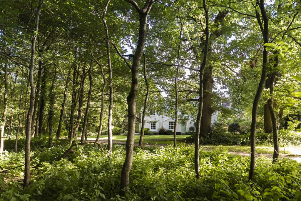 Church Road, Southborough Common, Image 11