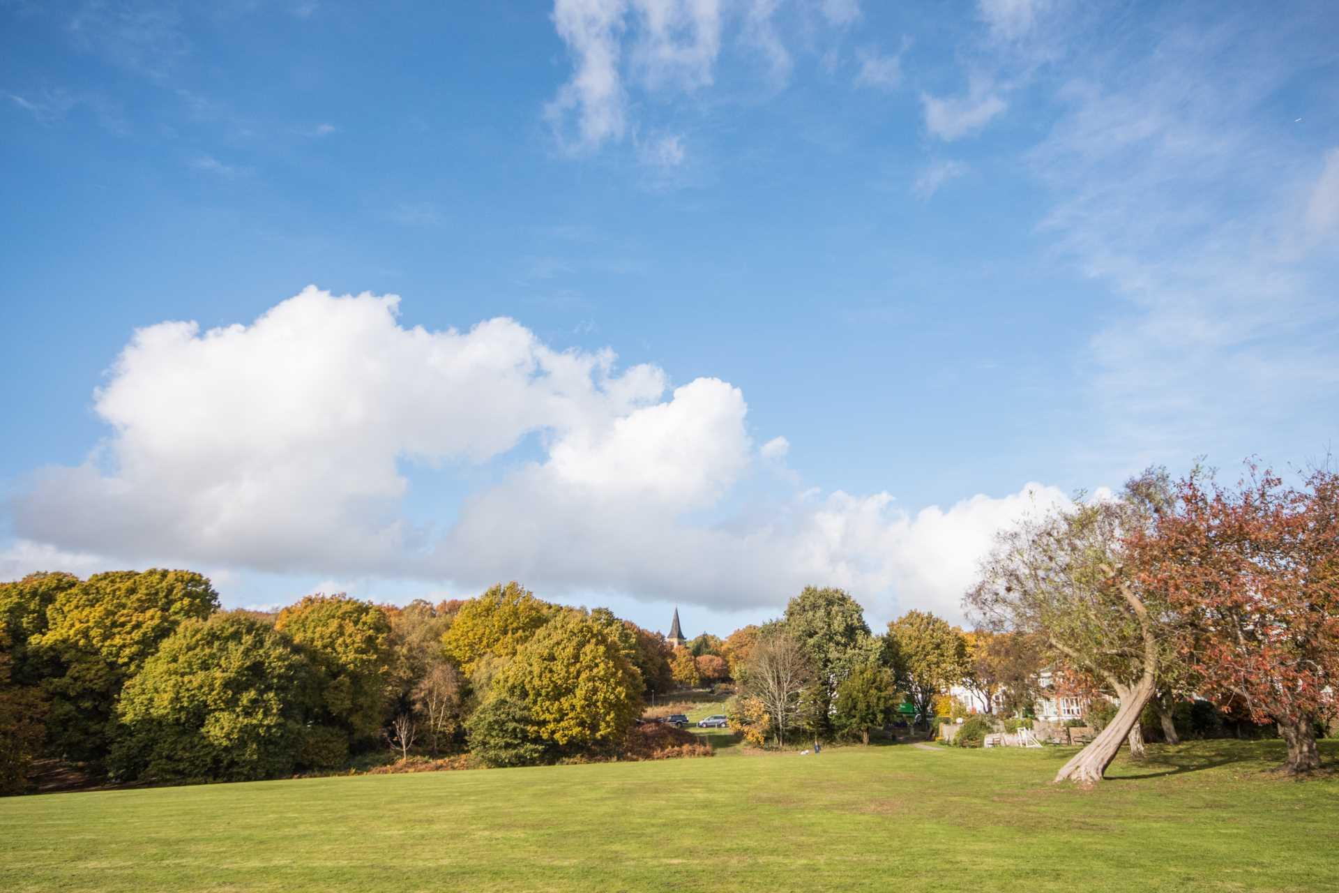 Pinewood Gardens, Southborough, Image 18