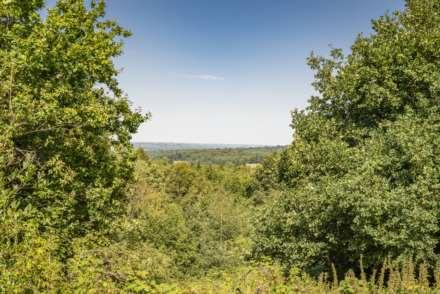 Pinewood Gardens, Southborough, Image 17