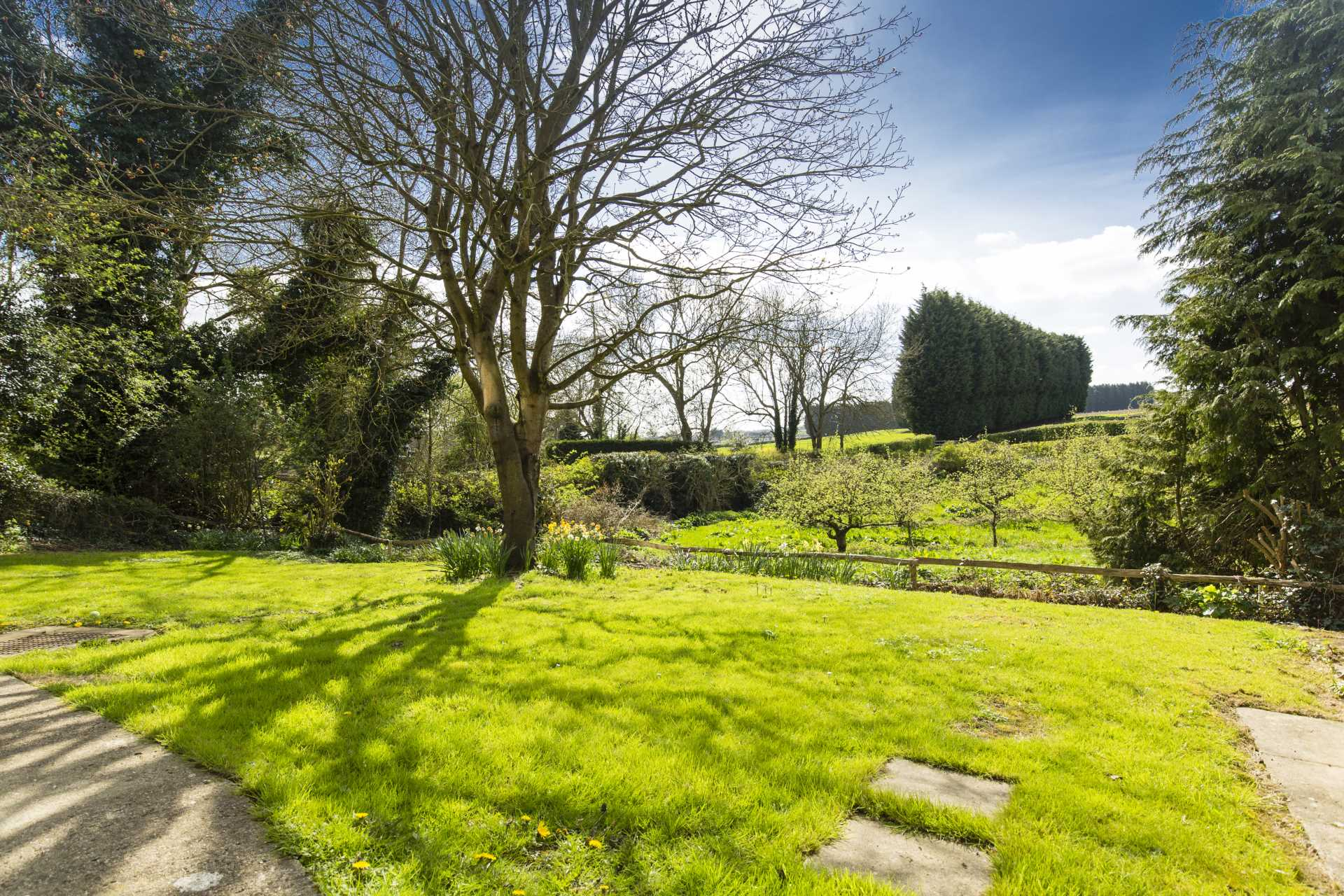 Warden Mill Close, Wateringbury, Image 13