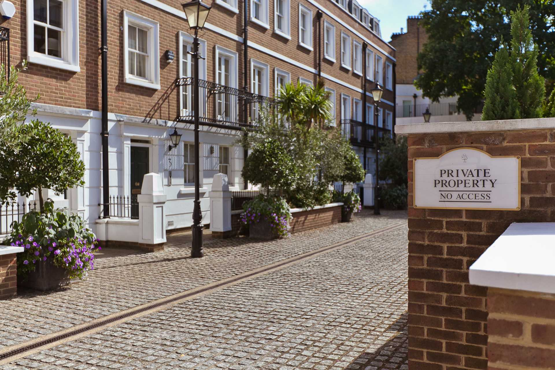 Jo Webster starts property acquisitions for clients