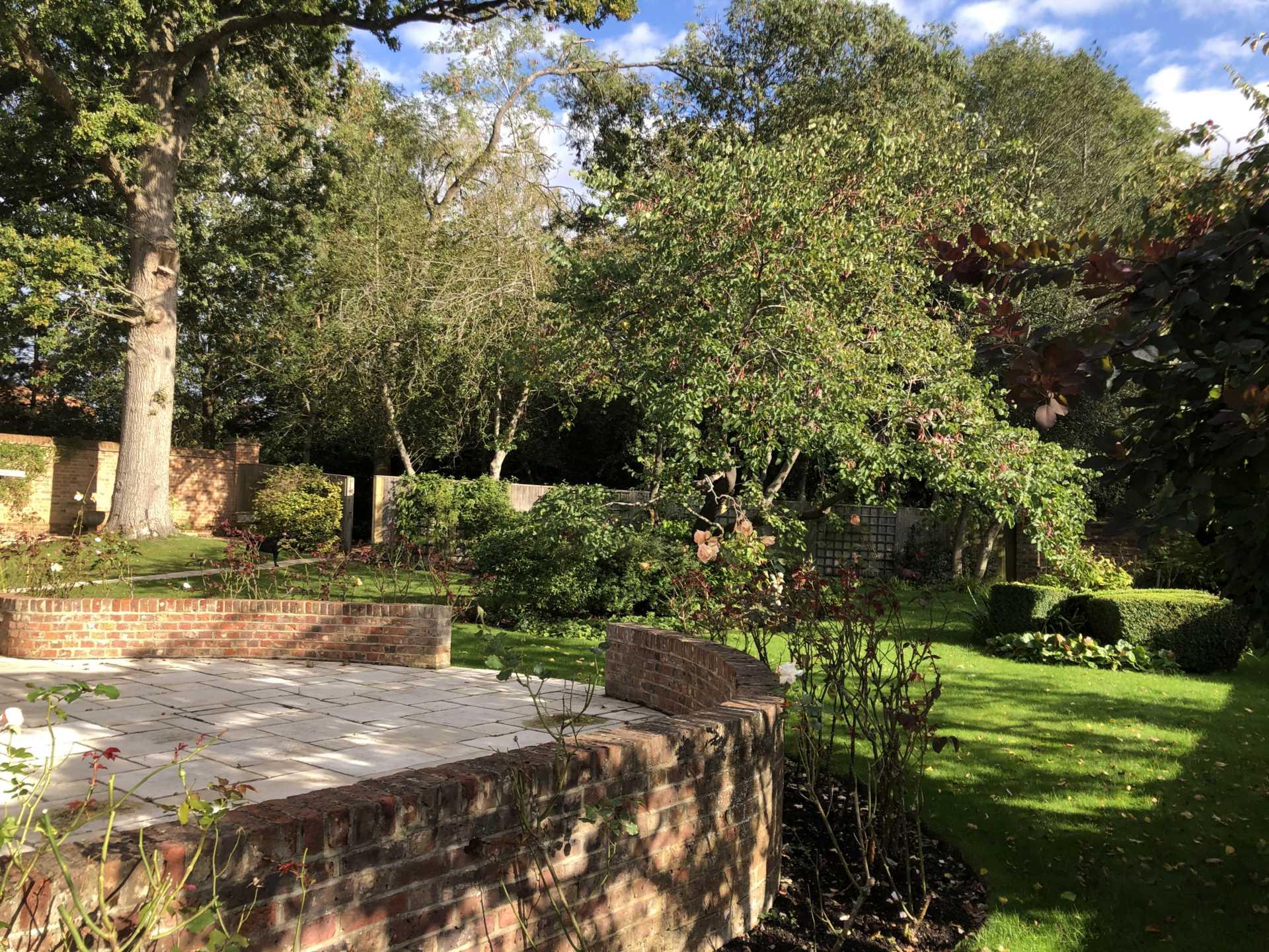Toms Hill, Aldbury, Image 14