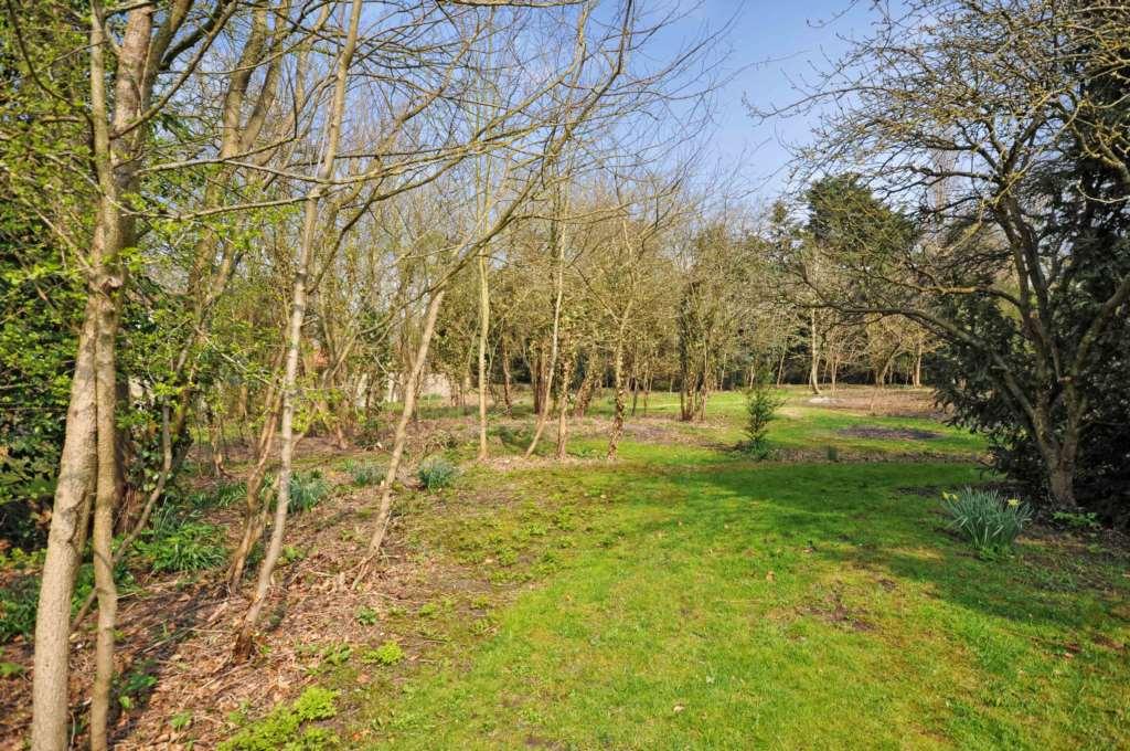 Shillingford, Image 8