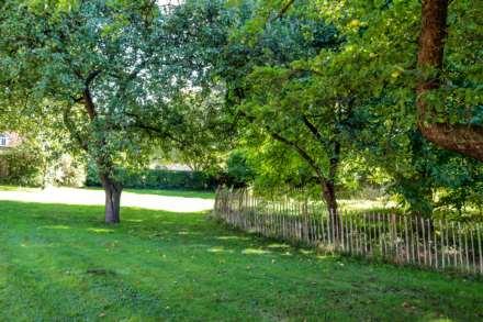 Burrows Hill, Ewelme, Image 7