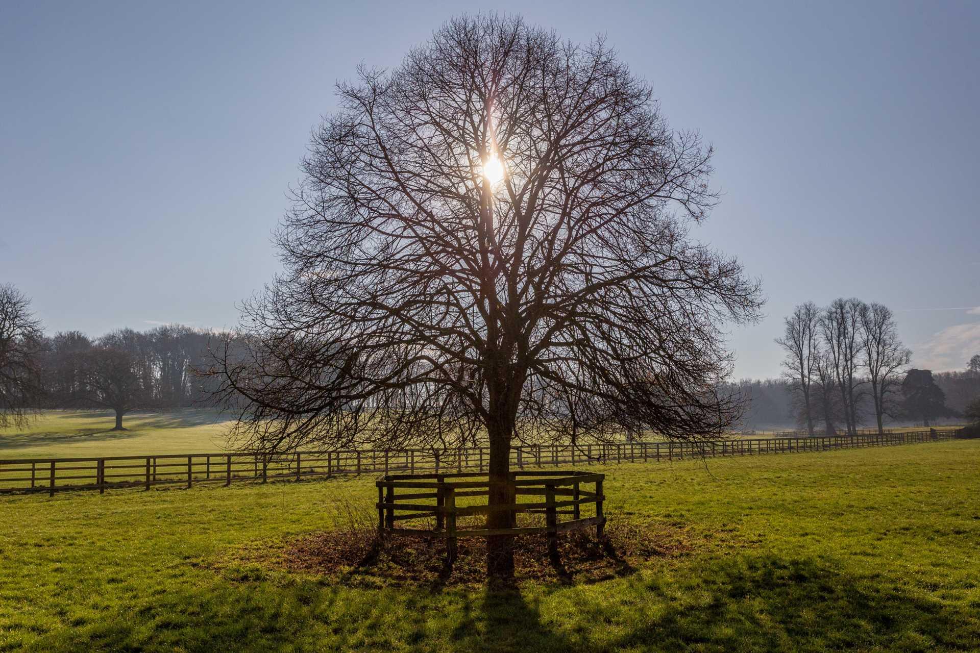 Pendley Farm, Tring, Image 19