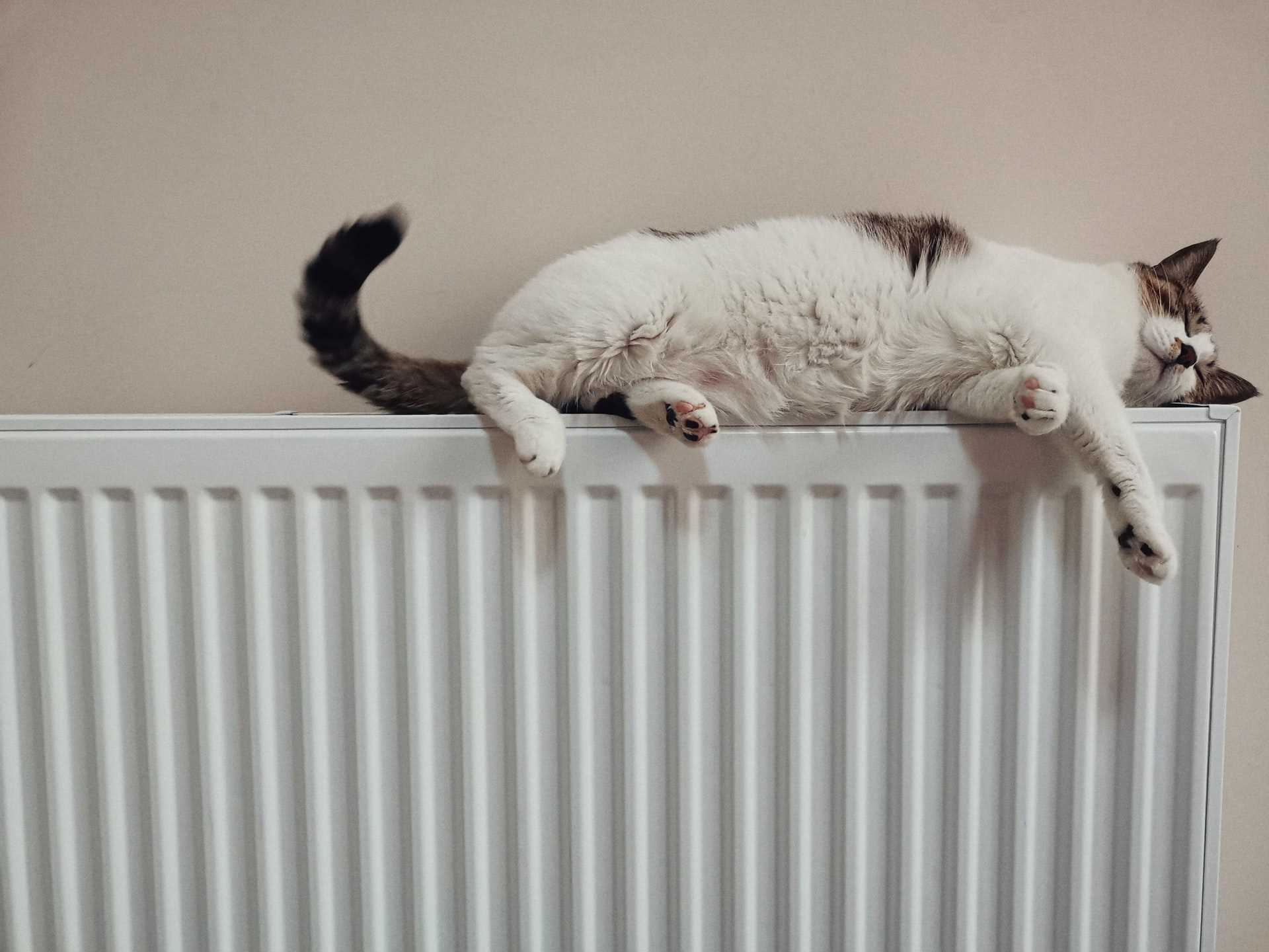 8 Ways Homeowners in Warwickshire Can Reduce Their Heating Costs