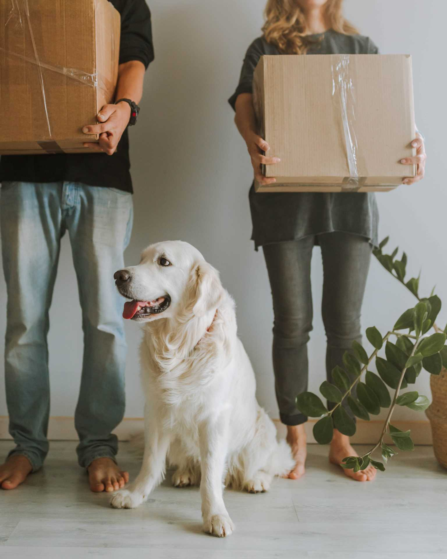 Advice on Choosing a Good Removal Firm in Warwickshire