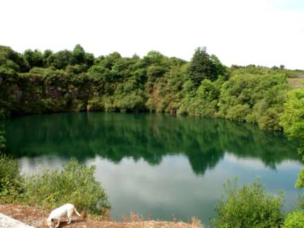 Property For Sale Victoira Slate Quarry Ahenny Carrick
