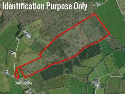 Farm Land, Ballybane, Liscarroll, Co. Cork