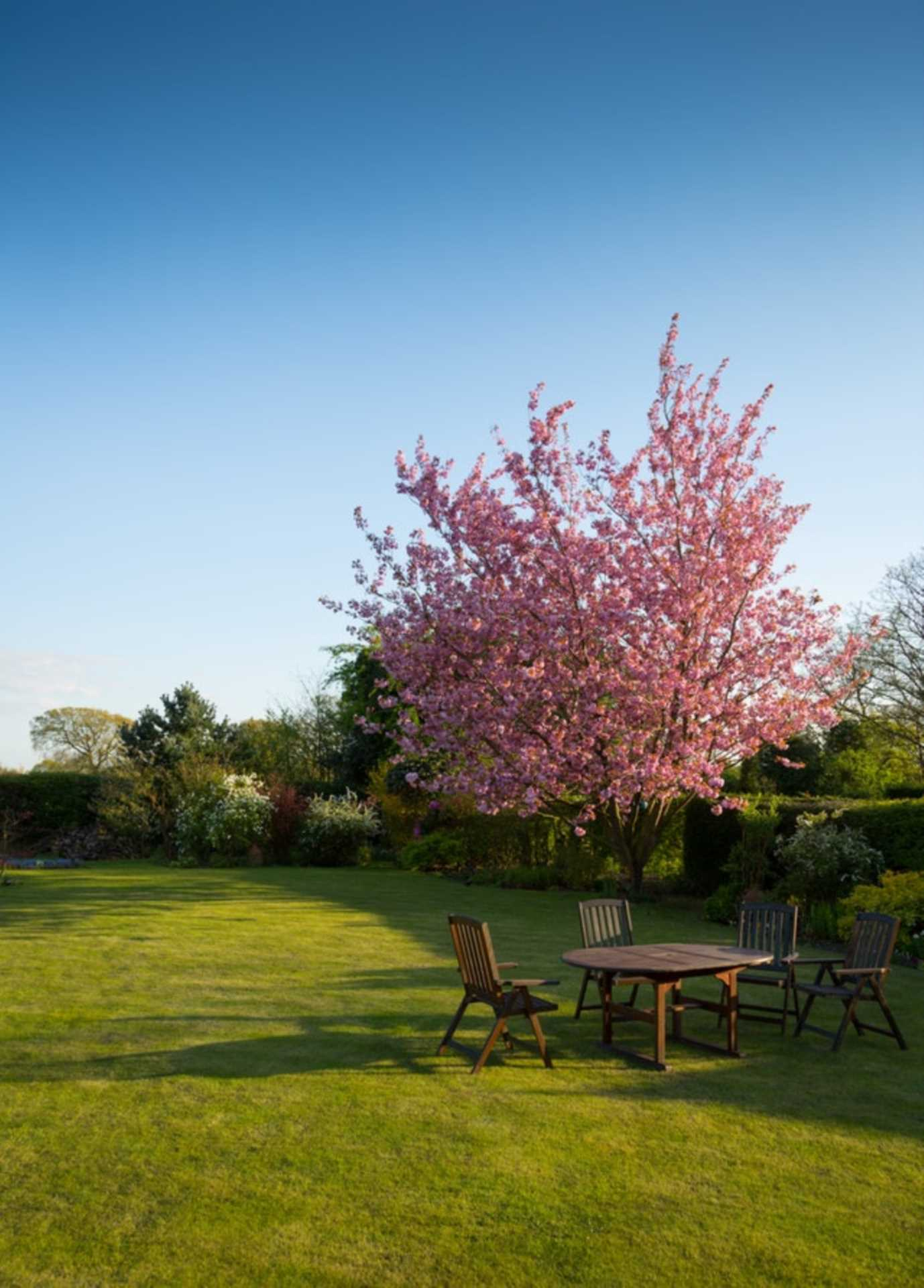 Easy Garden Makeover Tips to Add Value to Your Billericay Home